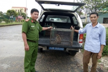 Receive rare wildlife individuals to rescue